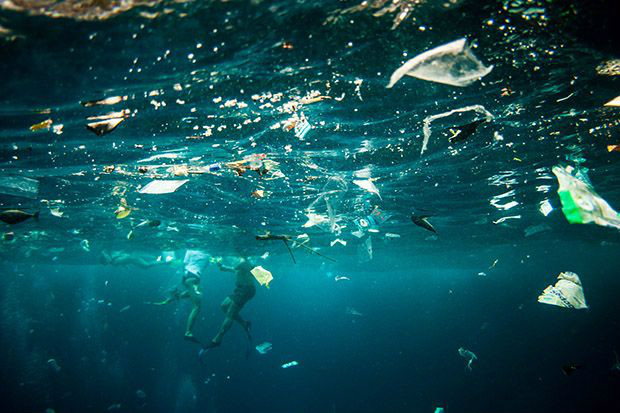 Plastic pollution billions of pieces of tiny plastic for Sfbay fishing report