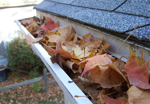 rain-gutters-clogged-with-leaves