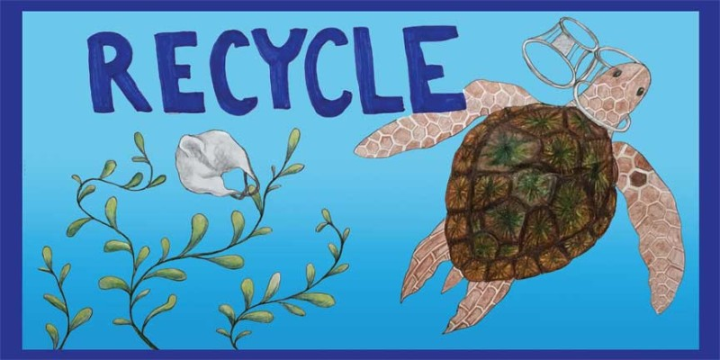 Truck-Turtle-Katherine -MHMS-8th grd