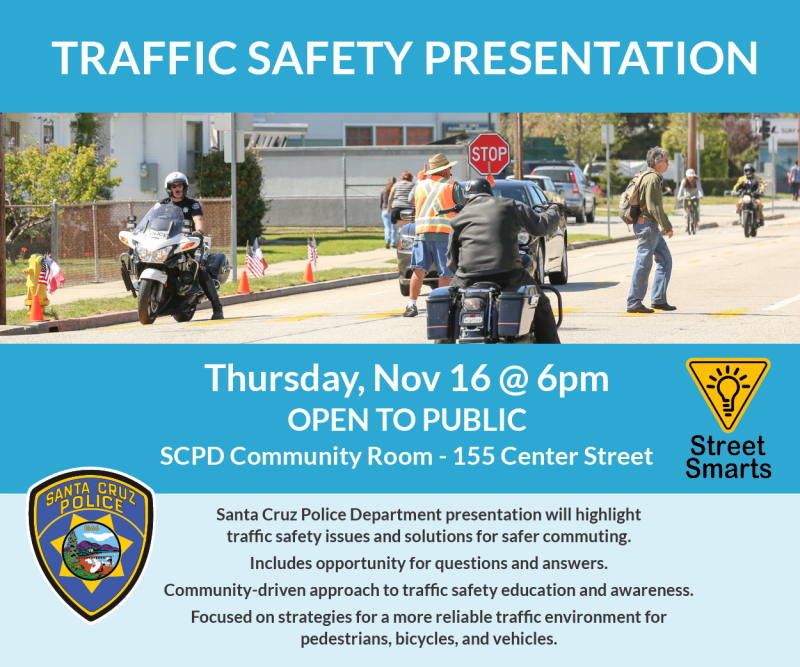 flier Traffic_Safety_300x250