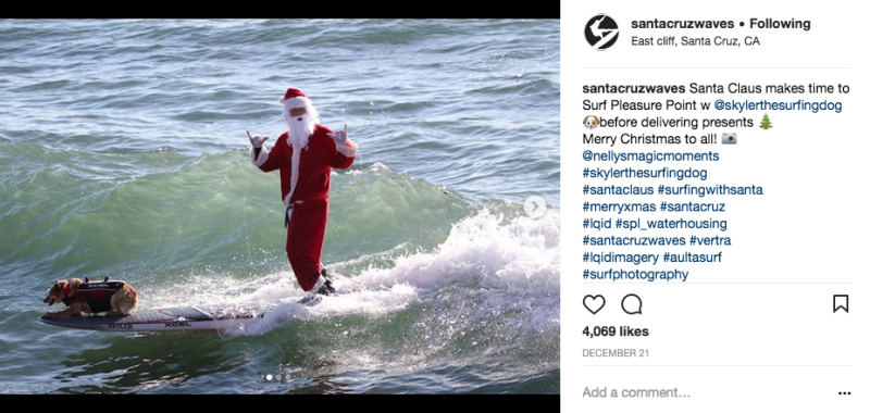 Santa Claus makes an appearance w/ Skyler the Surf Dog! image: Nelly