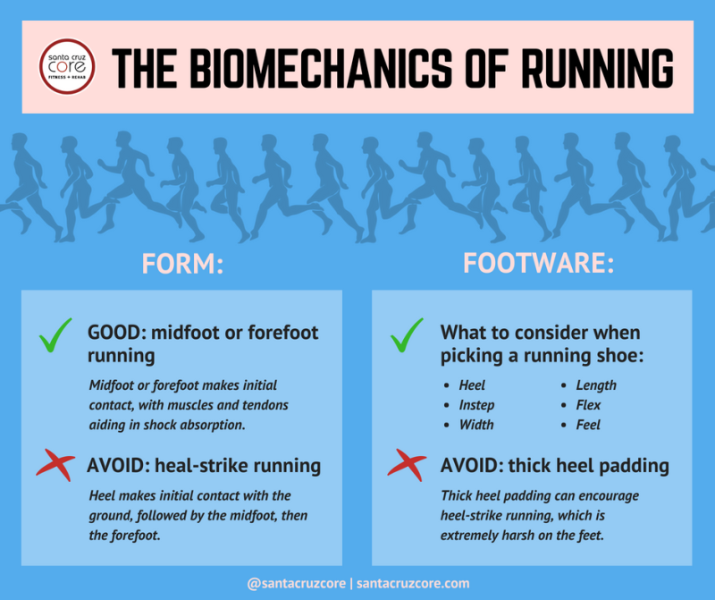 biomechanics-of-running-meme_santacruzcore