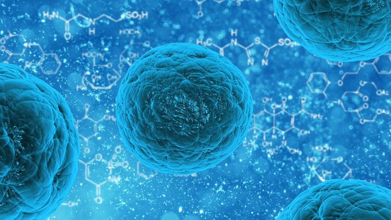 stem-cell-prolotherapy-prp-santa-cruz-core